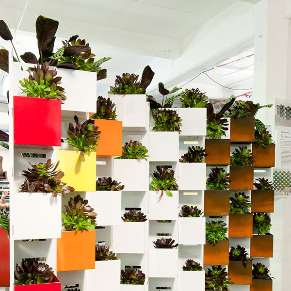 plant_wall_01